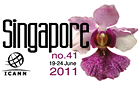 "ironDNS<sup class=""registered"">®</sup> is sponsoring ICANN meeting no. 41 in Singapore"